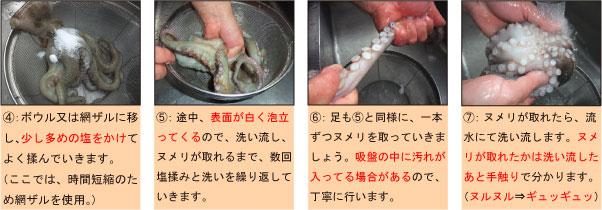 タコの下処理の仕方